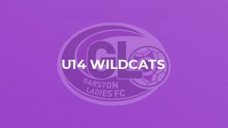 U14 Wildcats