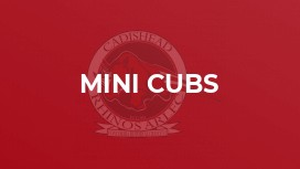 Mini Cubs