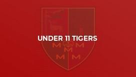 Under 11 Tigers