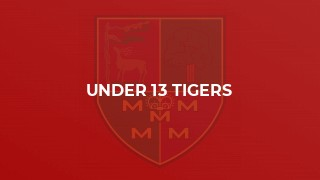 Under 13 Tigers