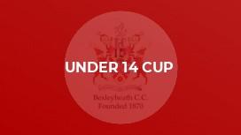 Under 14 Cup