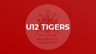 U12 Tigers