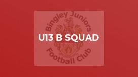 U13 B Squad