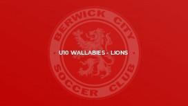 U10 Wallabies - Lions