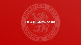 U11 Wallabies - Bears