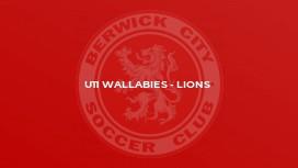U11 Wallabies - Lions