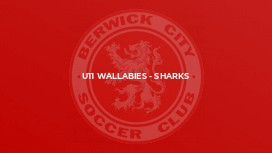 U11 Wallabies - Sharks