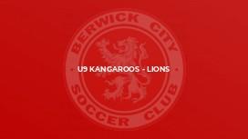 U9 Kangaroos - Lions