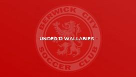 Under 12 Wallabies