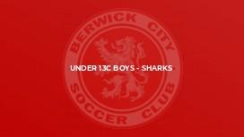 Under 13C Boys - Sharks