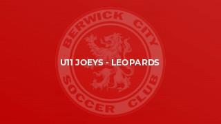 U11 Joeys - Leopards