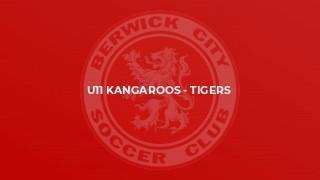 U11 Kangaroos - Tigers