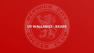 U11 Wallabies - Bears