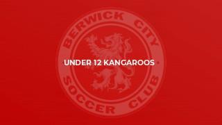 Under 12 Kangaroos