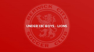 Under 13C Boys - Lions