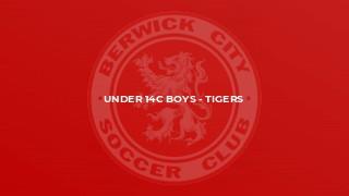 Under 14C Boys - Tigers