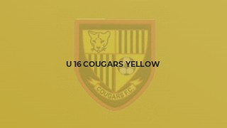 U 16 Cougars Yellow