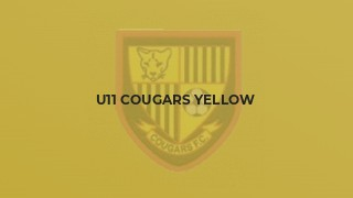 U11 Cougars Yellow
