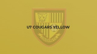 U7 Cougars Yellow