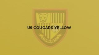 U9 Cougars Yellow