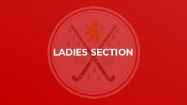 LADIES SECTION