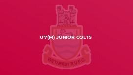 U17(M) Junior Colts