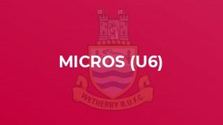 Micros (U6)