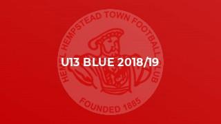 U13 Blue 2018/19
