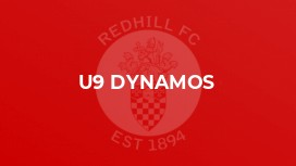 U9 Dynamos