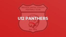 U12 PANTHERS