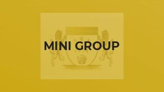 Mini Group