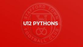 U12 Pythons