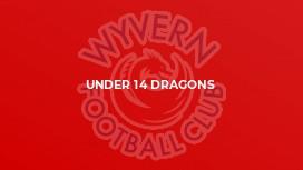 Under 14 Dragons