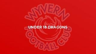 Under 18 Dragons
