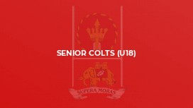 Senior Colts (U18)