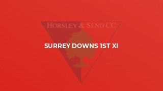 Surrey Downs 1st XI