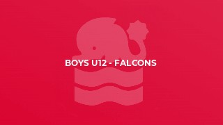 Boys U12 - Falcons