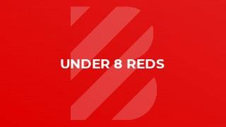 Under 8 Reds