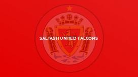 Saltash United Falcons