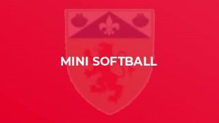 Mini Softball