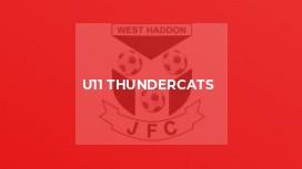 U11 Thundercats