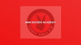 Mini Soccer Academy