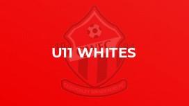U11 WHITES