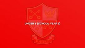 Under 8 (School Year 3)