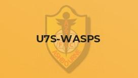 U7s-Wasps