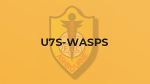U7 Wasps match report vs Ilkeston Town Panthers:
