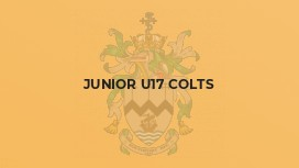 Junior U17 Colts