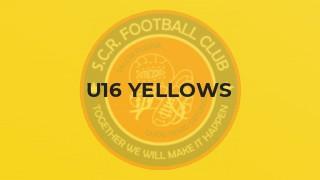 16 Yellows lose at Esher