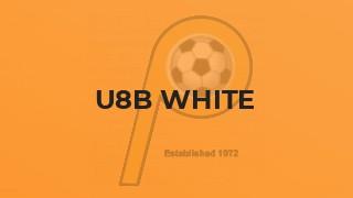 U8B WHITE