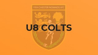 U8 Colts